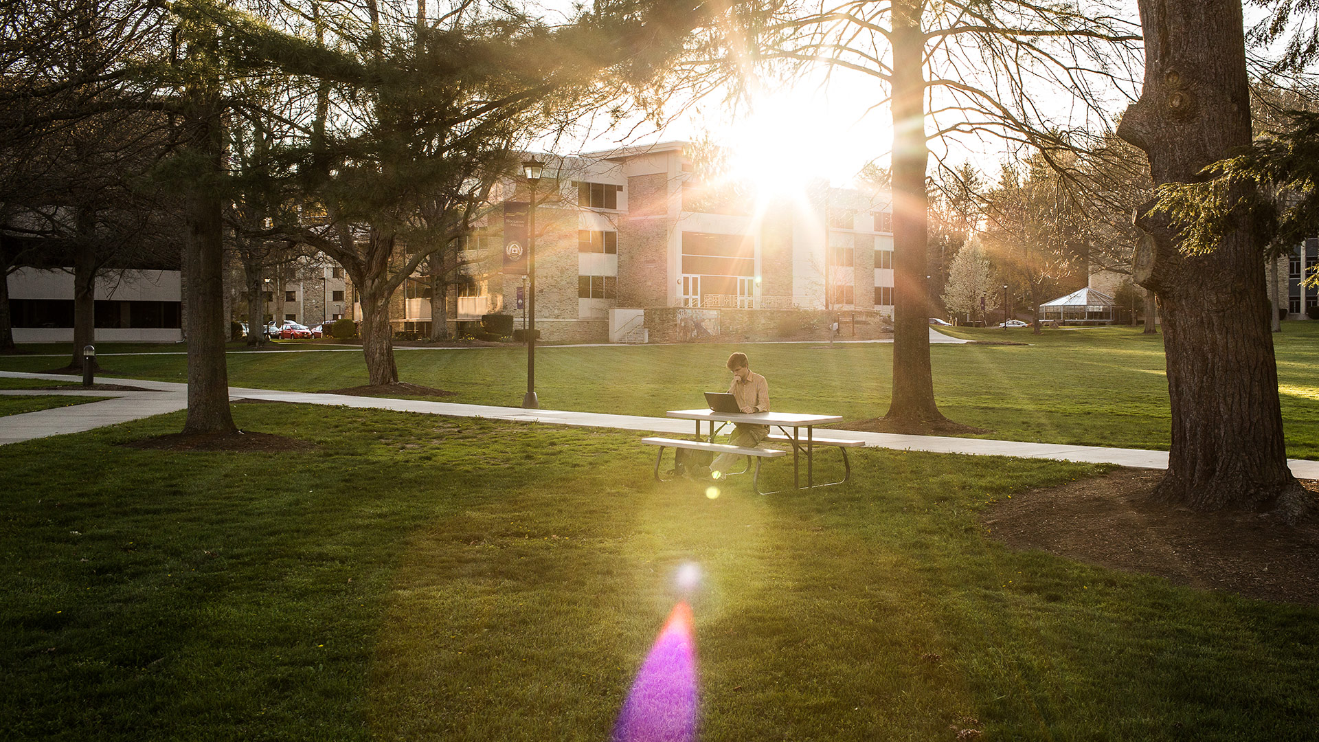Student studying on the quad at sunset