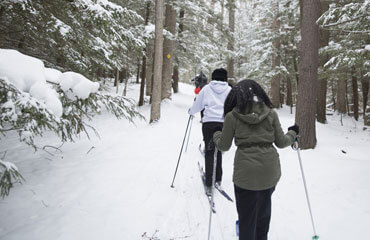 students cross-country skiing through the Houghton forest