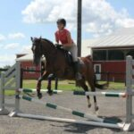 Bailey the horse jumping outdoors