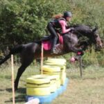 Bree jumping cross country fence