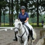 Carmella the horse trotting in an outdoor arena