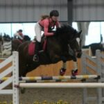 Charlotte the horse jumping an oxer