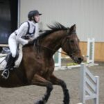 Hogan the horse jumping in indoor arena