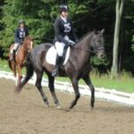 Pasha cantering in outdoor arena