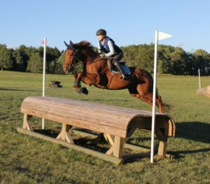 Pheonix the horse jumping outside