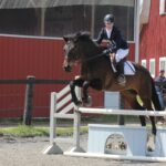 Willon jumping in outdoor arena